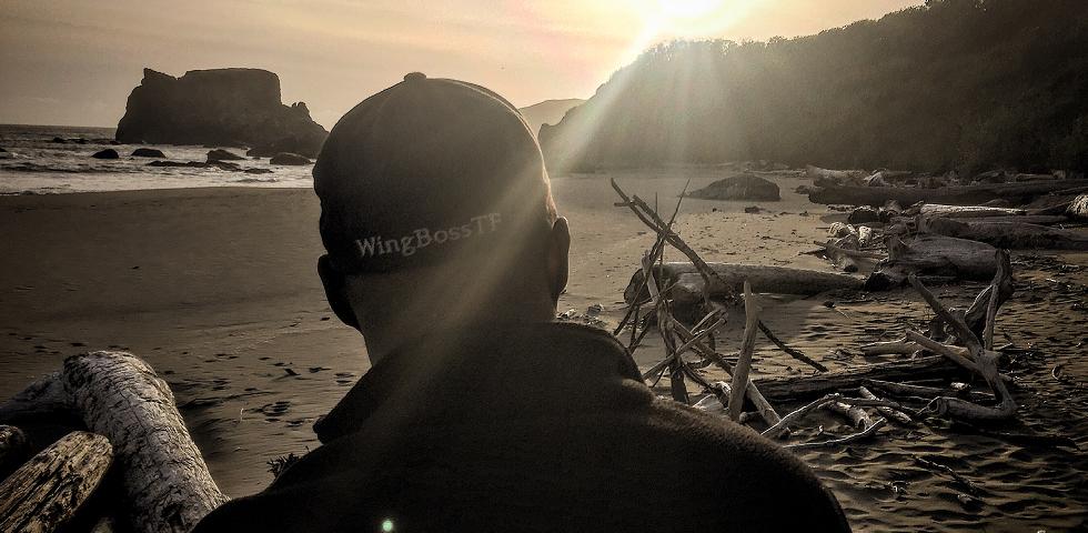 wingbosstf-ad15.png